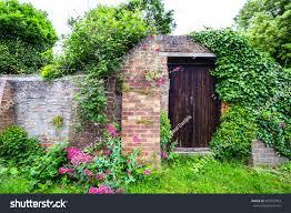 wooden door old ivy covered brick stock photo 436207963 shutterstock
