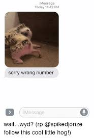Wrong Number Meme - i message today 1142 pm sorry wrong number message waitwyd rp