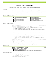 exles of successful resumes effective resume outline therpgmovie