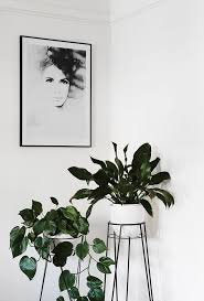 indoor plant pots idea with silver color in small plants pot ideas