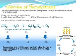 Light Independent Reactions Definition Honors Biology Photosynthesis Ppt Online Download