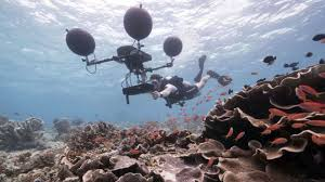 film blue world blue planet ii the secrets behind the bbc one series bbc news