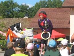 where can i rent a clown for a birthday party july august a clown at le birdie heated pool and leisure at le