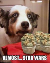 Cupcake Memes - cupcake dog image gallery know your meme