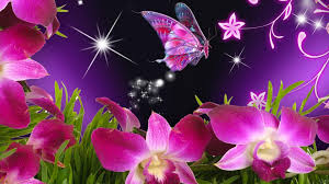 butterfly flowers 3d butterfly flowers wallpaper