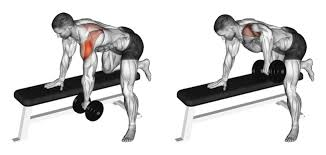 Incline Bench Dumbbell Rows The One Arm Dumbbell Row A Simple And Effective Upper Back Builder