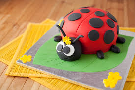 ladybug birthday cake ladybird birthday cake ilovecooking