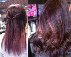 brown plum hair color chocolate mauve hair hair coloring ideas fantasy hair color on