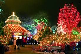 christmas light service chicago google image result for http elitechicagolimoservices com images
