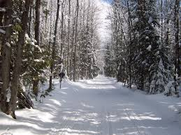 Snowmobile Trail Maps Michigan by Seney Snowmobile Association Home