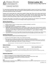 summary and qualifications resume sumptuous design ideas criminal justice resume 10 criminal uses impressive design criminal justice resume 14 criminal justice resume examples samples with