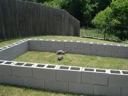 outdoor box turtle habitat gardening guide
