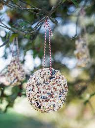 kids u0027 craft bird seed christmas ornaments hgtv