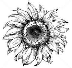 képtalálat a következőre u201esunflower tattoo u201d tetkók pinterest