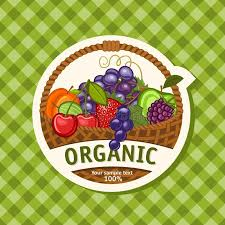 organic fruit basket organic stock vector illustration of health healthy
