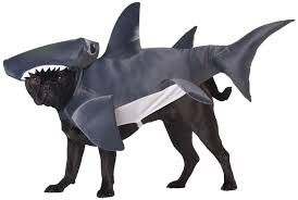 Big Dog Halloween Costume 20 Absolutely Amazing Dog Halloween Costumes Style Motivation