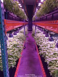 full spectrum light for plants totalgrow broad grow spectrum light led bulbs