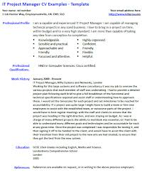 Project Manager Example Resume by It Project Manager Cv Example And Template Lettercv Com