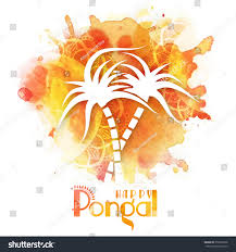 Pongal Invitation Cards Greeting Card Creative Sugarcane On Colorful Stock Vector