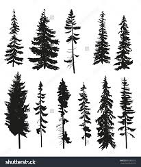simple pine tree danielhuscroft com