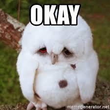 Sad Okay Meme - okay sad owl baby meme generator