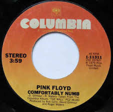 Comfortably Numb Keyboard Pink Floyd Comfortably Numb At Discogs