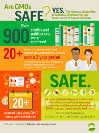 Gmos In The Grocery Store Gmo Answers