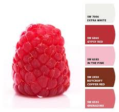 13 best raspberry paint color images on pinterest benjamin moore