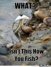 Funny Fish Memes - fishing by meme center meme center