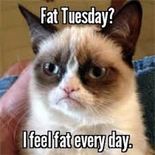Fat Tuesday Meme - fat tuesday i feel fat every day meme something love