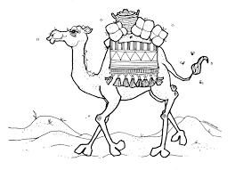 camel coloring page printable camel coloring pages coloring me