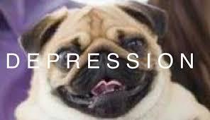 Depressed Pug Meme - depressed meme hole home facebook