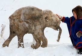 opinion case reviving extinct species