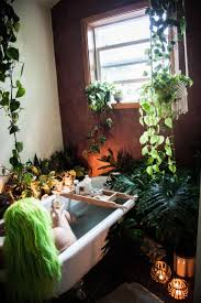 1624 best home plants images on pinterest plants live and bathtubs