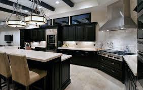 idea kitchen kitchen photos dark cabinets home design ideas