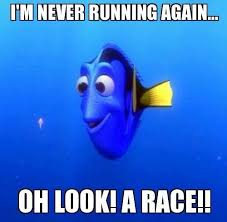 Running Memes - 39 best funny running memes images on pinterest running humor