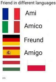 Different Languages Meme - friend in different languages ami amico freund amigo