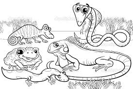Impressive Turtle Coloring Pages Top Coloring 676 Unknown Reptile Coloring Pages