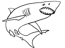 awesome coloring pages sharks cool coloring 6511 unknown