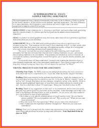 Goal Essay Sample Autobiographical Essay Examples Trueky Com Essay Free And