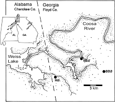 Georgia Map Usa by Exceptional Fossil Preservation In The Conasauga Formation
