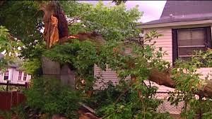 Weatherbug Backyard More Storm Reports Wgn Tv