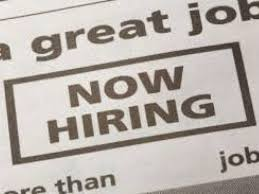 20 job openings in milford hooters target and bob u0027s stores