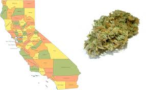 Recreational Marijuana Map First Recreational Marijuana Business Licenses Issued In