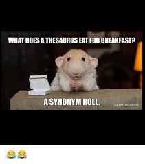 Meme Synonyms - what does a thesaurus eat for breakfast a synonym roll meme