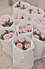 best 25 plant wedding favors 248 best wedding favors images on wedding ideas apple