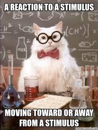 Moving Away Meme - response