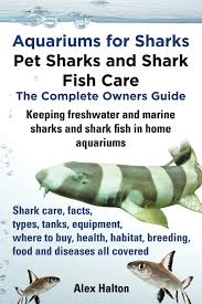 aquariums for sharks pet sharks and shark fish care the complete