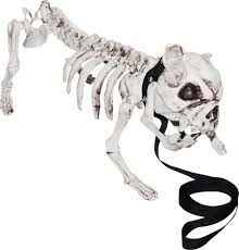 Halloween Costumes English Bulldogs Outdoor Halloween Décor Halloween Costumes