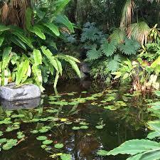 Quail Botanical Gardens Free Tuesday San Diego Botanic Garden Encinitas 2018 All You Need To